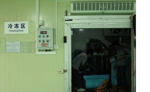 V konečné fázi se prepreg zmrazí pro uchování integrity. Každá role je zapečetěná v lednici se stálou teplotou a vlhkostí.