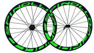 spinollo50new green