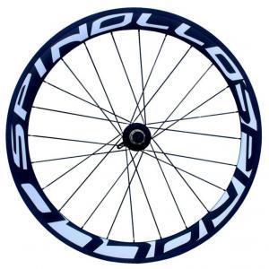 spinollo50new rear
