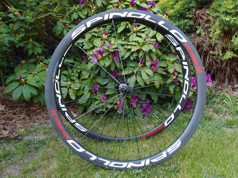 Spinollo36clincherAeroLite