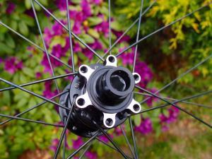 SpinolloDisc 36clicher7